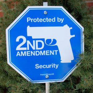 2nd Amendment Security Yard Sign