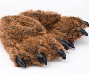 Bear Feet Slippers
