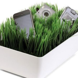Grass Charging Station