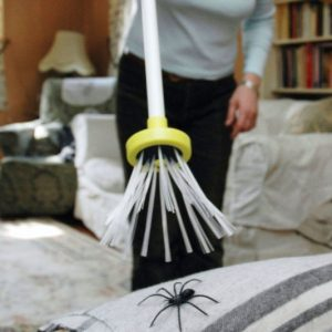 Harm-Free Spider Catcher