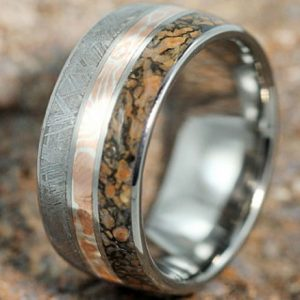 Meteorite And Dinosaur Bone Ring