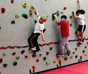 Rock Climbing Wall Panels