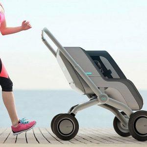 Self Driving Smart Stroller