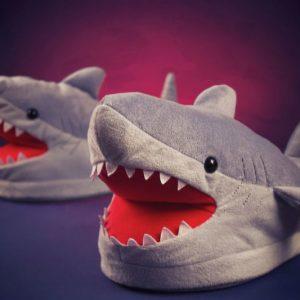 Chomping Shark Slippers