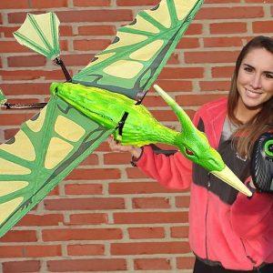Flying Radio Controlled Pterodactyl