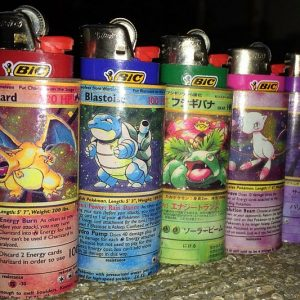 Pokemon Lighter Sleeves