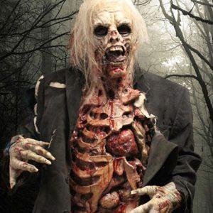 Professional Zombie Costume