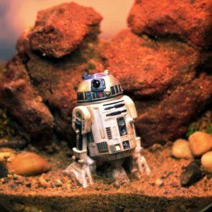 R2-D2 Tatooine Terrarium