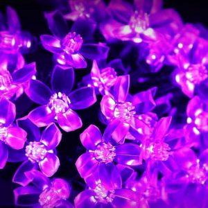 Solar Powered Fairy Lights
