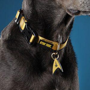 Star Trek Uniform Dog Collar