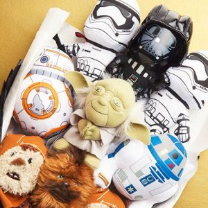 Star Wars Characters Bouquet