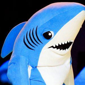 Superbowl Shark Costume