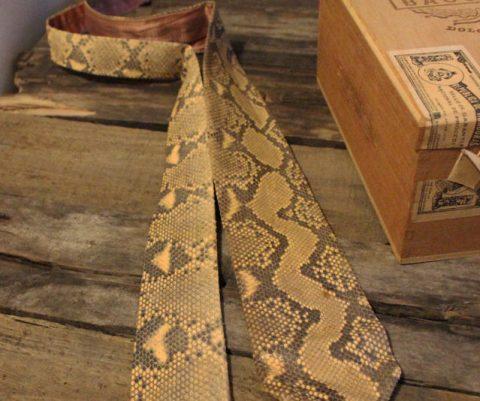 The Snakeskin Necktie