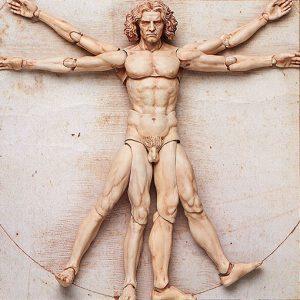 Vitruvian Man Action Figure