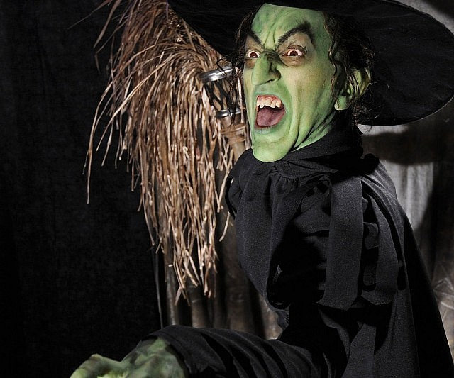 Wicked Witch Of The West Costume Interwebs