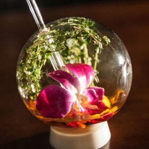 Bubble Cocktail Glasses