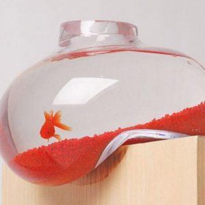 Bubble Tank Fish Bowl
