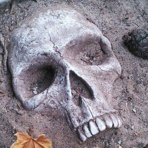 Buried Skull Garden Decoration