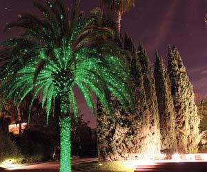 Fireflies Landscape Light