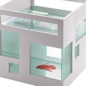 Fish Condo Aquarium