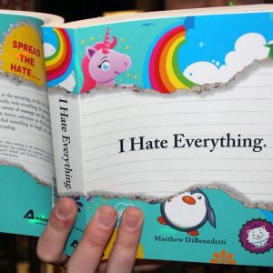 I Hate Everything Book