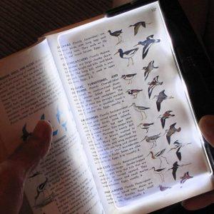 LED Book Light