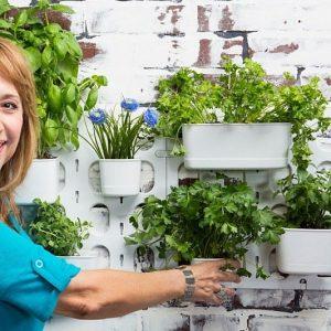 Living Wall Garden Starter Kit