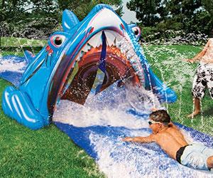 Shark's Mouth Water Slide
