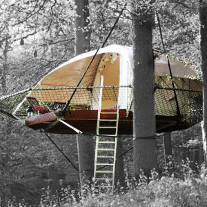 Tree Cabin Tent