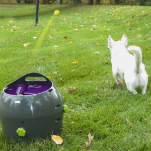Automatic Pet Ball Launcher