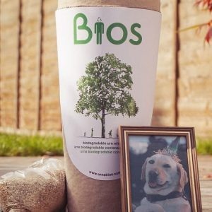 Biodegradable Pet Urn Tree Kit