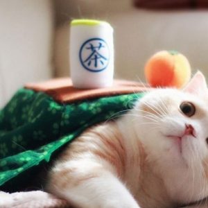Cat Table Blanket