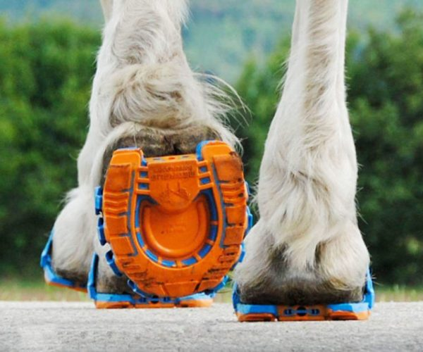 Clippable Shock Absorbing Horse Shoes