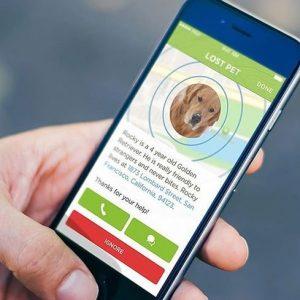 Digital Pet Tracker Collar