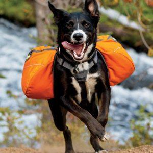 Dog Harness Backpack