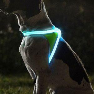 Illuminated And Reflective Dog Vest