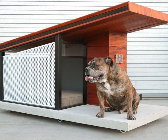 MDK9 Dog House