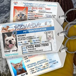 Personalized Driver's License Pet Tag