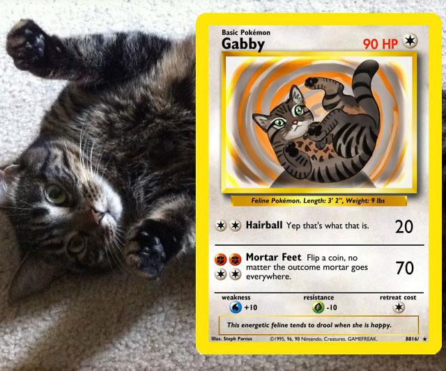 Personalized Pet Pokemon Cards Interwebs