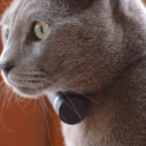 Pet GPS Tracker/Activity Monitor