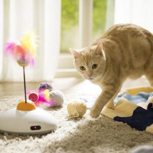 Smartphone Controlled Interactive Cat Toy