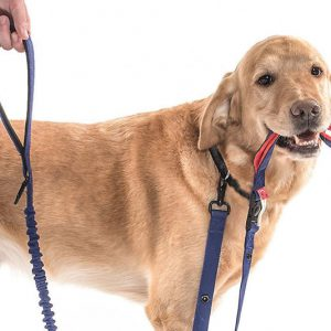Two-Way Dog Friendly Leash