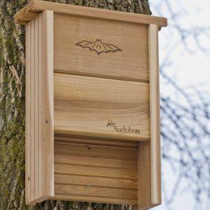 Audubon Bat Shelter