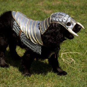Wild Knight Dog Armor