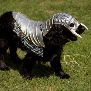 Wild Knight Dog Armor