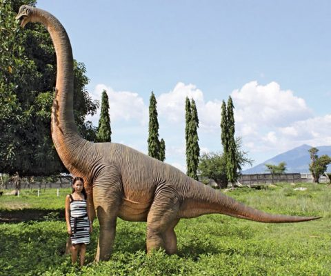 Giant Brachiosaurus Dinosaur Statue