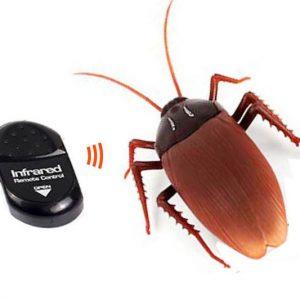 Remote Control Cockroach