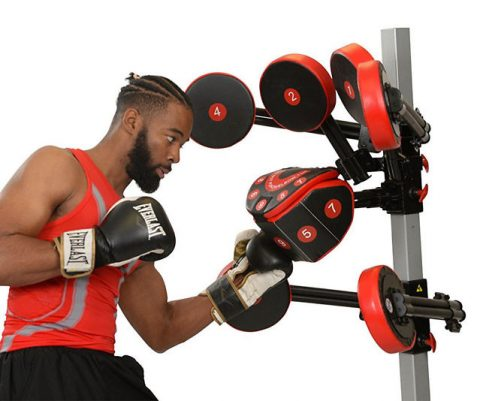 FightMaster Boxing Trainer