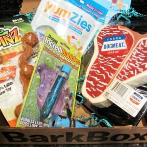 Dog Goodies Subscription Box