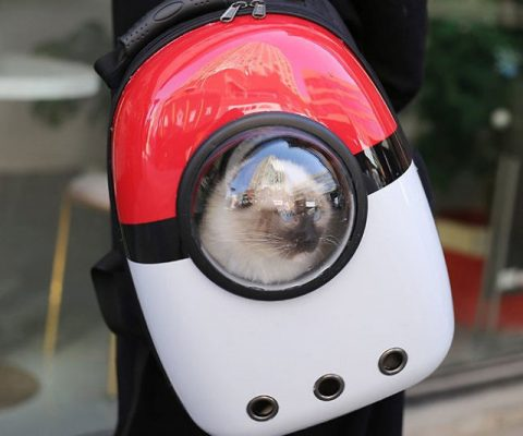 Pokemon Poke Ball Pet Carrier Backpack